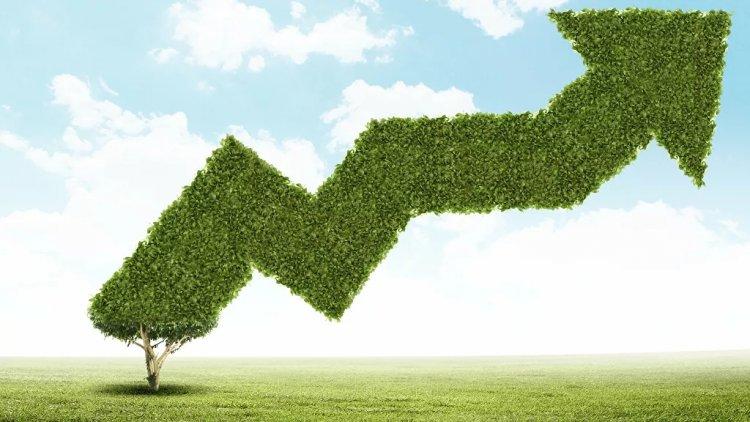 «Зеленые» облигации отличаются от обычных бумаг тем, что предполагают более высокую ответственность для эмитента
