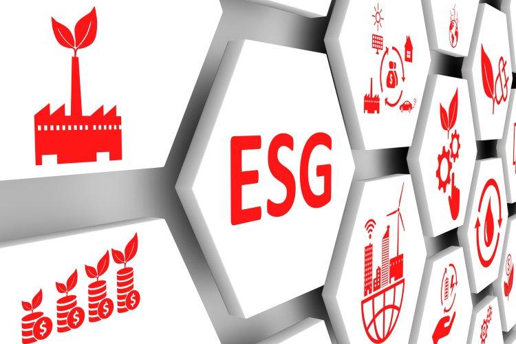 Нюансы популярных во всем мире ESG-инвестиций